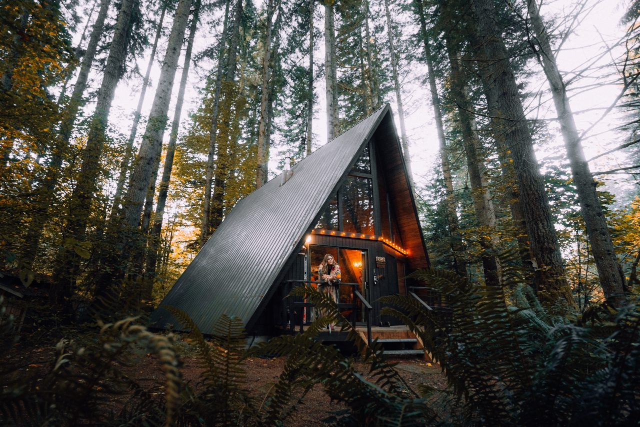satisfy your wanderlust - Forest House - Aribnb
